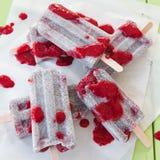 Chia marznący popsicles Obrazy Royalty Free