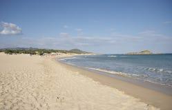 chia na plaży obraz royalty free
