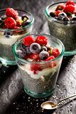 Chia pudding with addition of  raspberries and blueberries in the glasses on a black background, healthy diet concept. Chia pudding with addition of  frozen Royalty Free Stock Photos