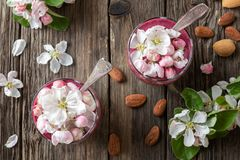 Chia pudding with almond milk and apple blossoms royalty free stock photo