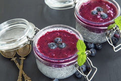 Chia pudding desserts with blueberry topping Stock Images