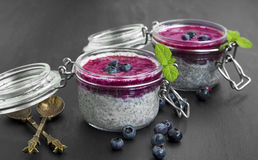 Chia pudding desserts with blueberry topping Stock Photos