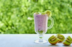 Chia pudding in the glass with sliced fresh kiwi fruit. Detox superfoods breakfast or healthy dessert with copy space. On the natural green background. Side Stock Images