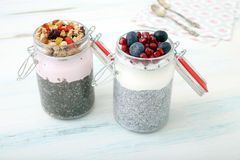 Chia pudding Royalty Free Stock Photography