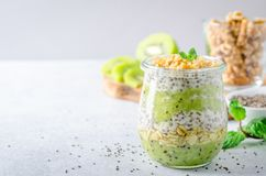 Chia pudding with kiwi and mint. One glass jar with chia seed pudding with kiwi and granola. Horizontal image, copy space, front view Stock Photo