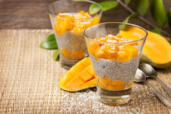 Chia pudding  and mango pieces Stock Photography
