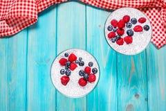 Chia pudding med nytt bär och driftstopp Superfoods begrepp Royaltyfri Bild