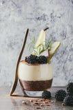 Chia pudding med rishavregröt royaltyfri fotografi