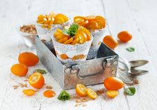 Chia pudding parfait with kumquat. Chia pudding parfait, layered with kumquat  and granola Royalty Free Stock Photos