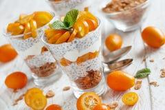 Chia pudding parfait with kumquat. Chia pudding parfait, layered with kumquat  and granola Stock Photography