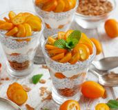 Chia pudding parfait with kumquat. Chia pudding parfait, layered with kumquat  and granola Royalty Free Stock Photo