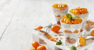 Chia pudding parfait with kumquat royalty free stock photography