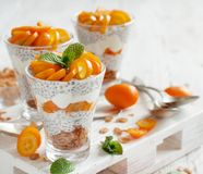 Chia pudding parfait with kumquat stock images