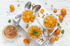 Chia pudding parfait with kumquat royalty free stock image