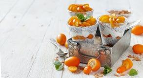 Chia pudding parfait with kumquat. Chia pudding parfait, layered with kumquat  and granola Stock Images