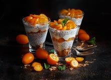 Chia pudding parfait with kumquat. Chia pudding parfait, layered with kumquat  and granola Royalty Free Stock Image