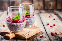 Chia pudding with pomegranate seeds and mint Royalty Free Stock Photos