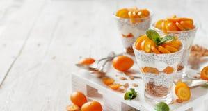 Chia puddingparfait med kumquaten Royaltyfri Fotografi