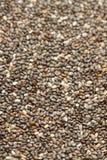 Chia seed Stock Photo