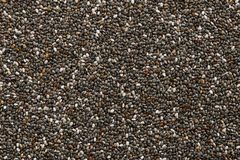 Chia Seed Royalty Free Stock Image
