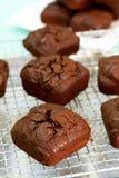 Chia Seed Brownies Arkivbilder