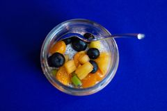Chia seed coconut milk pudding with various fruit stock image