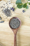 Chia seed healthy food Royalty Free Stock Photography