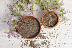 Chia seed healthy super food with flower over white Stock Photos