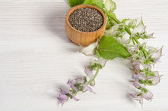 Chia seed healthy super food with flower over white Stock Image