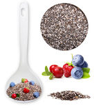 Chia seed isolated Stock Photography