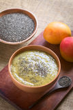 Chia Seed and Mango Pudding Stock Image
