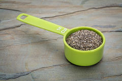 Chia seed measuring cup Royalty Free Stock Photos