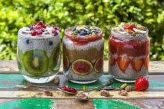 Chia Seed Pudding Royaltyfri Foto