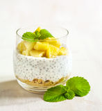 Chia seed pudding with caramelized apple and crushed grain cookies Stock Image