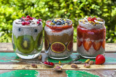 Chia seed pudding Royalty Free Stock Photo