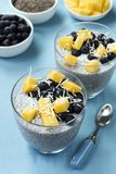 Chia Seed Pudding mit Blaubeeren Mango und Kokosnuss Stockbilder