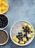 Chia Seed Pudding Top View met Bosbessenmango en Kokosnoot Royalty-vrije Stock Foto's