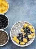 Chia Seed Pudding Top View mit Blaubeeren Mango und Kokosnuss Lizenzfreie Stockfotos