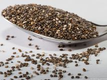 Chia Seed. In a spoon royalty free stock photo