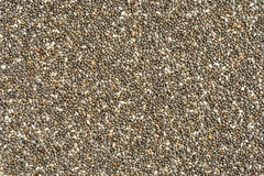 Chia seed super food Stock Images
