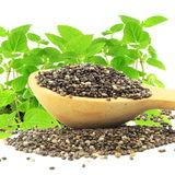 Chia seed in wooden spoon with chia plant in pure white background Royalty Free Stock Images