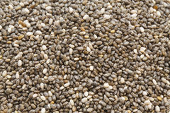Chia seeds Stock Image