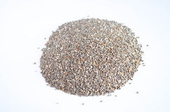 Chia Seeds Royaltyfria Bilder
