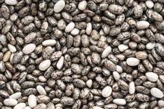 Chia seeds background Stock Photo