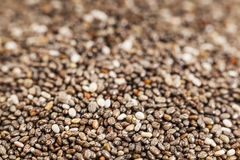 Chia seeds close-up Royalty Free Stock Photo