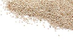 Chia Seeds Royalty Free Stock Photo
