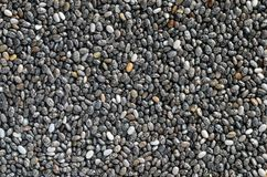 Chia seeds background Stock Images