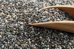 Chia seeds crop Stock Photography