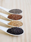 Chia seeds. Flax seeds. White sesame seeds. Sesame seeds black. Royalty Free Stock Photos