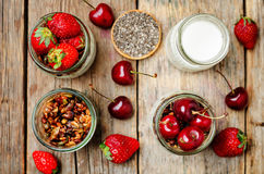 Chia seeds granola Greek yoghurt pudding with berries. Toning. selective focus Royalty Free Stock Photos